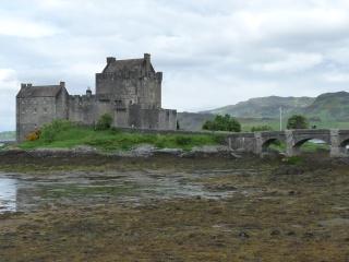 Un petit tour chez les Celtes - Page 2 P1100712
