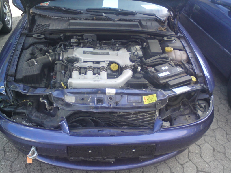 500euro V6 B-Vectra Front310