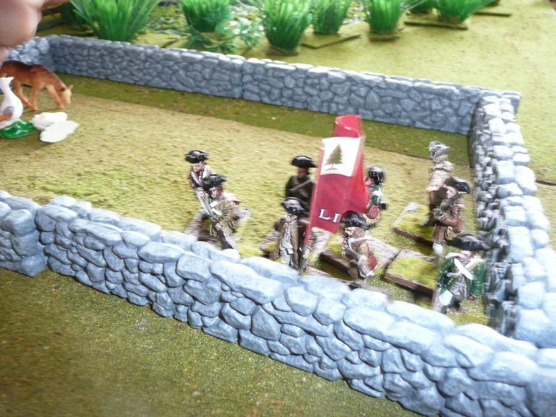 Des photos de la campagne du Mont Geron, 25 juin 1770 (reconstituée en 2011) P1050377