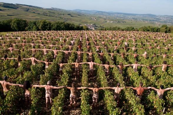 barbeuc en champagne 11 et 12 Juin - Page 7 Vignes10