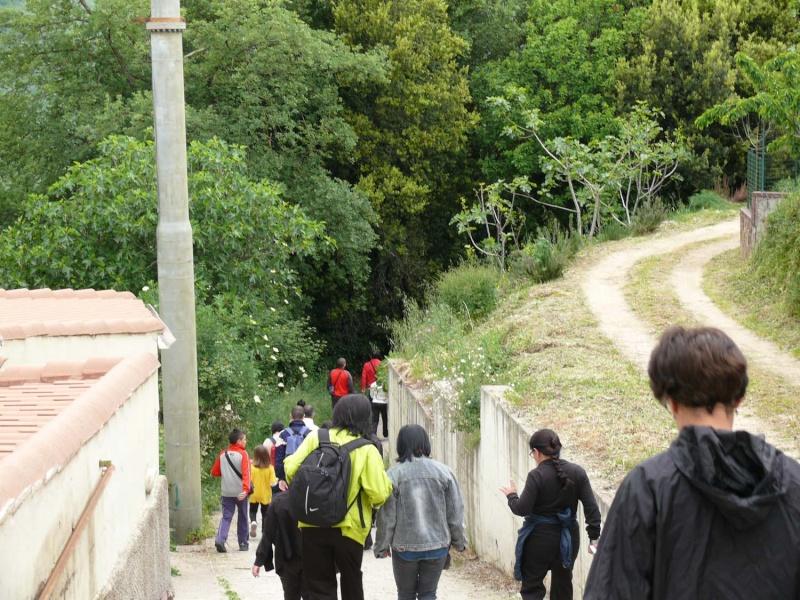 Camminos de monte 2011 1_210