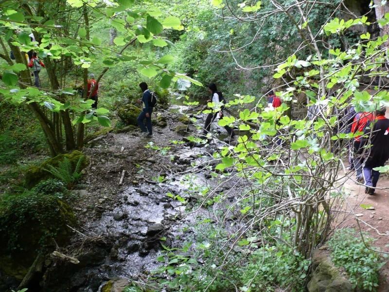 Camminos de monte 2011 1_310