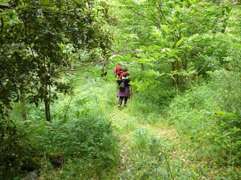 Camminos de monte 2011 1_410