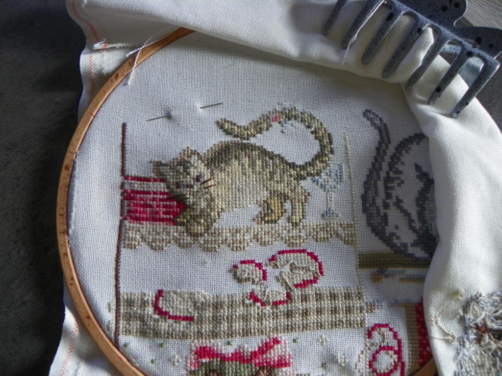 sal MMe La Fée bétises de chats  - Page 2 101_0311