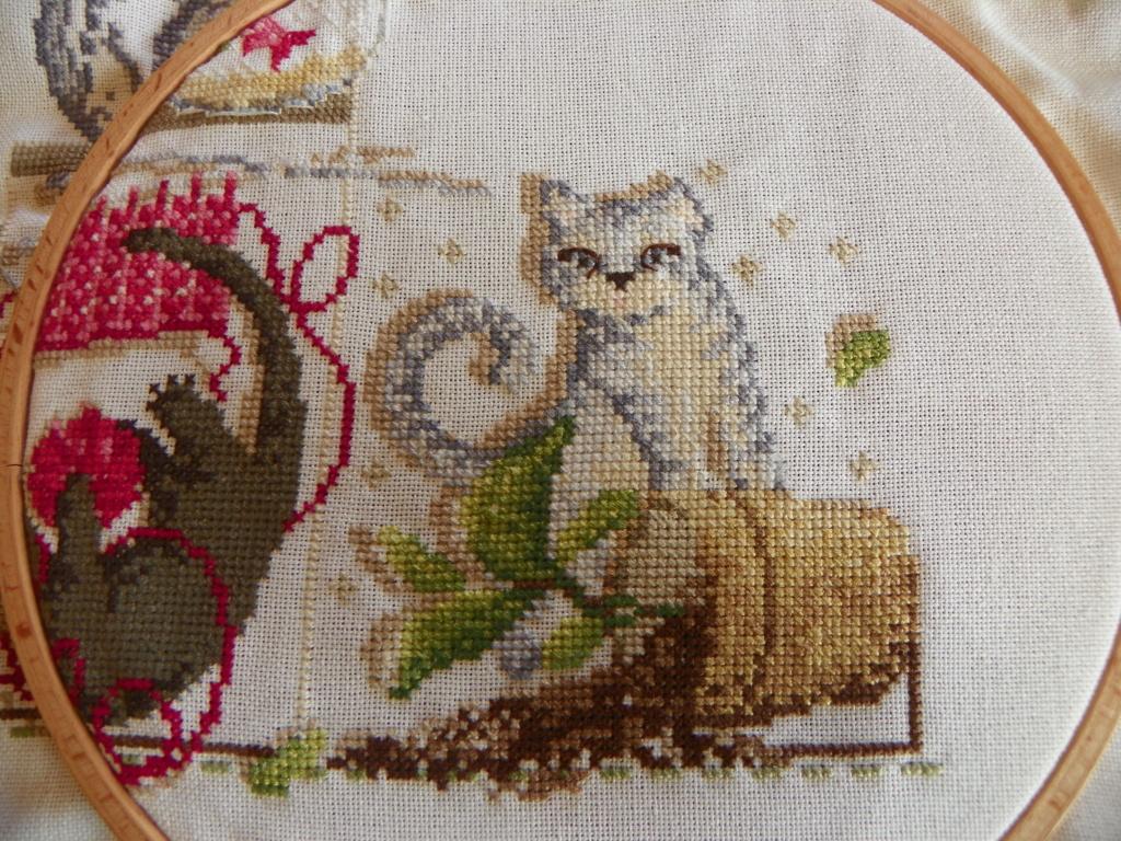 sal MMe La Fée bétises de chats  101_0712