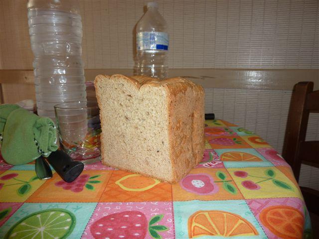 Nos pains du jour P1030015