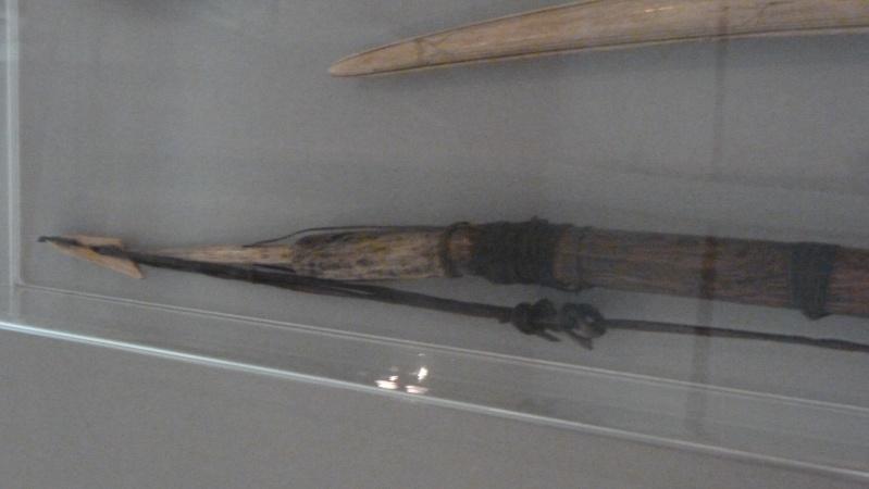 La galerie ethnologie du World Museum de Liverpool P1010119