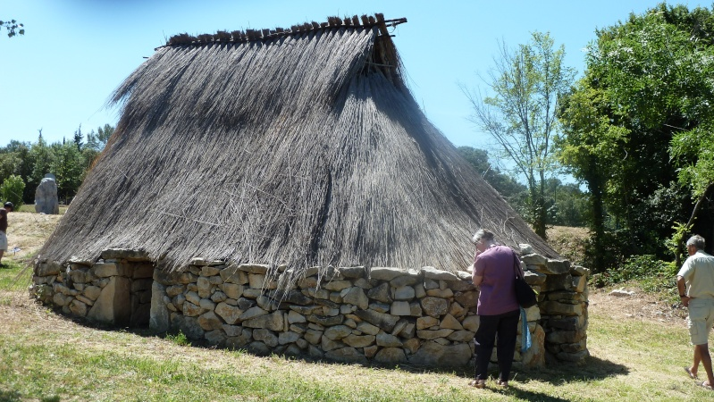 Les maisons néolithiques d'Auneau, le 25 mars 2011 - Page 3 P1010221