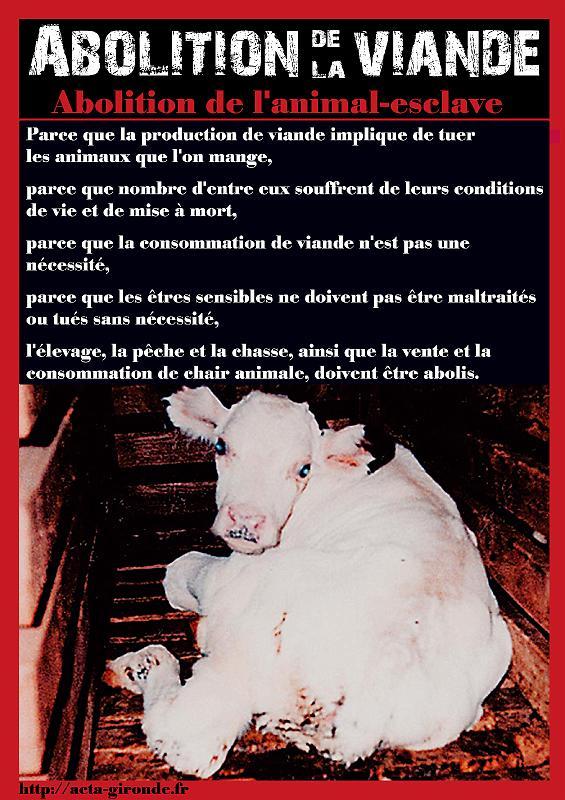 Semaine Mondiale pour l'Abolition de la Viande le 28 mai 2011 à Monptellier Abolit10