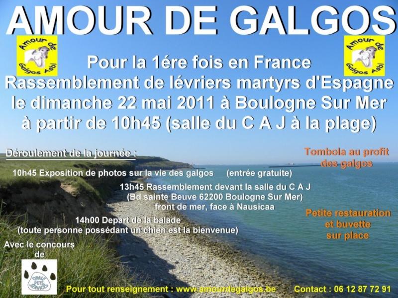Rassemblement de lévriers martyrs, le 22 mai 2011 à Boulogne-sur-Mer  Affich10
