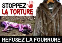 20.11.10 - Paris : Stand sensibilisation aux droits des animaux Stoppe10