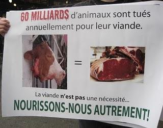 Semaine Mondiale pour l'Abolition de la Viande le 28 mai 2011 à Monptellier Tracts11