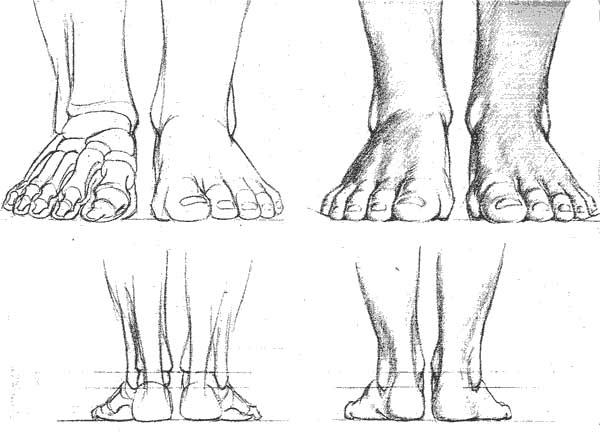 [Aide] Pied et main dans differente position Repp0111