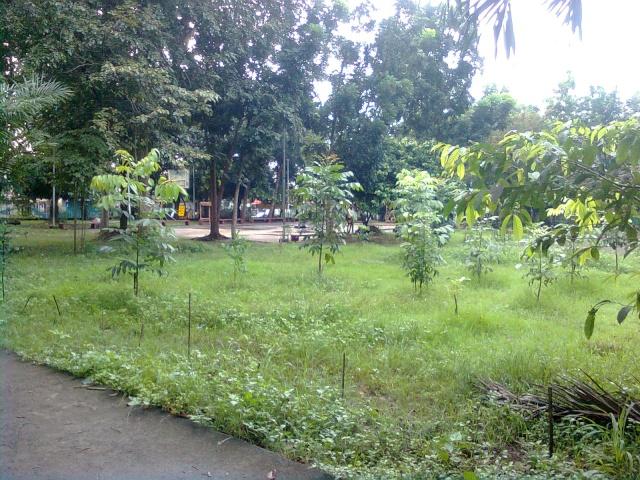 Lagro Dulo Plaza Ngayon Image013