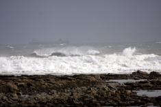 International Beach Clean up & PADI Project AWARE Beach_10