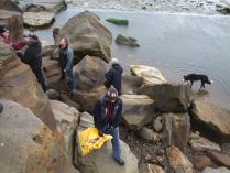 International Beach Clean up & PADI Project AWARE Dscf1810