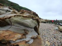 International Beach Clean up & PADI Project AWARE Dscf1811