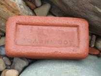 International Beach Clean up & PADI Project AWARE Dscf1812