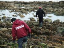 International Beach Clean up & PADI Project AWARE Dscf1815