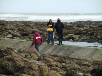 International Beach Clean up & PADI Project AWARE Dscf1820