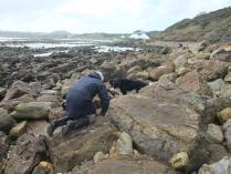 International Beach Clean up & PADI Project AWARE Dscf1913