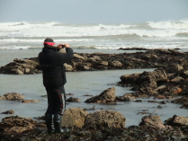 International Beach Clean up & PADI Project AWARE Dscf1914