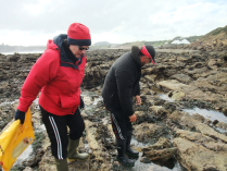 International Beach Clean up & PADI Project AWARE Dscf1919
