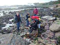 International Beach Clean up & PADI Project AWARE Dscf1921