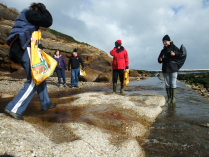 International Beach Clean up & PADI Project AWARE Dscf2015