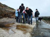International Beach Clean up & PADI Project AWARE Dscf2018