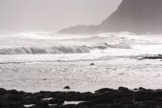 International Beach Clean up & PADI Project AWARE Img_7810