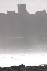 International Beach Clean up & PADI Project AWARE Img_7812