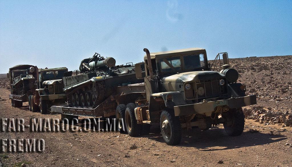 Photos - Artillery et MRLS Fremo123