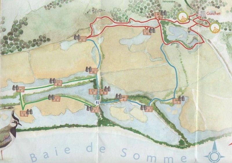 WK en Baie de Somme le 20, 21 et 22 Mai 2011 - Page 3 30356110