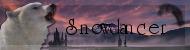 Snowdancer Snowda10