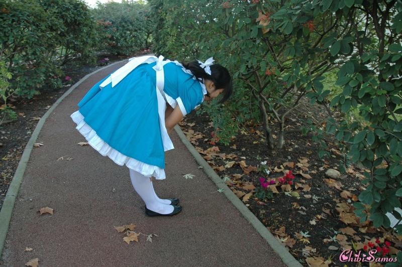 Cosplay de Alice aux Pays des Merveilles Hoshii12