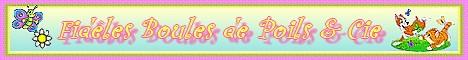 Fidèles Boules de Poils et Cie - Page 3 Mini-b20