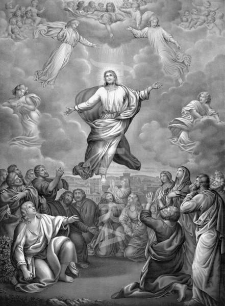 Ascension de Notre-Seigneur Ascens13