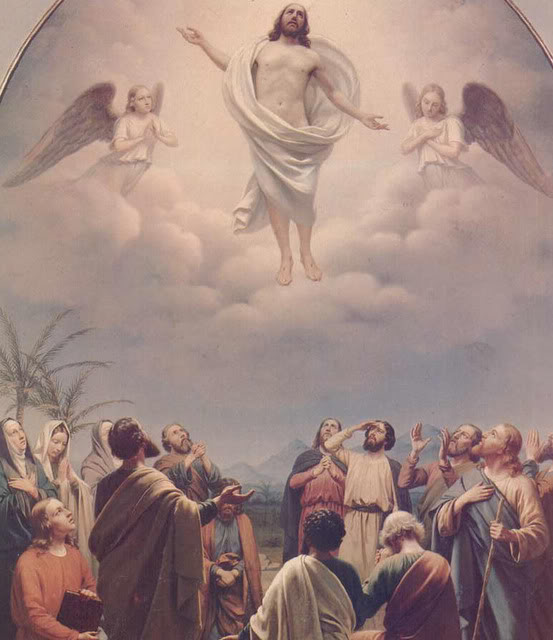 Ascension de Notre-Seigneur Ascens14