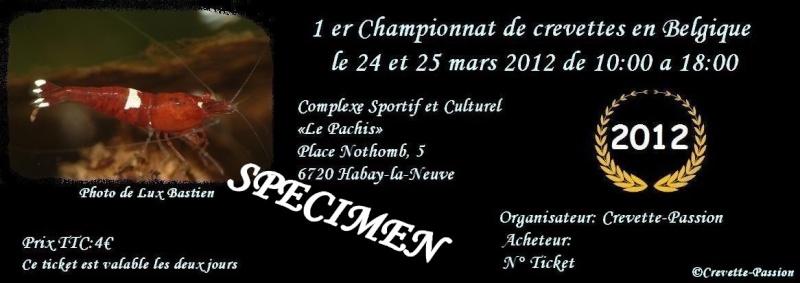 1 er Championnat de crevettes en Belgique 2012 Specim10