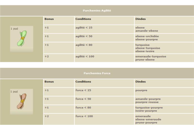 Les parchemins de caractéristiques Parch510
