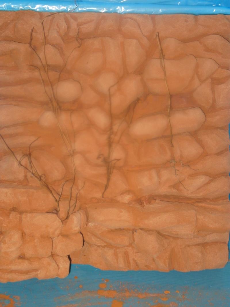 90x50x50+ decor poly (fait maison) Img_1210