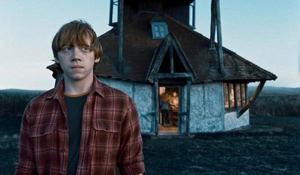 Harry Potter et les reliques de la mort 19514210