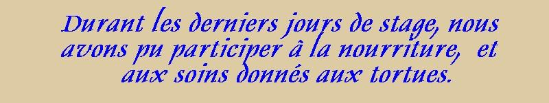 Pour les amoureux des tortues Hermann : stage au village des tortues de Gonfaron (Sud de la France) Fer_s114