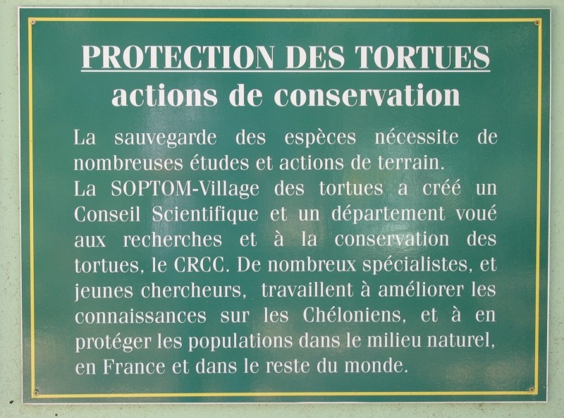 Pour les amoureux des tortues Hermann : stage au village des tortues de Gonfaron (Sud de la France) Fer_s125