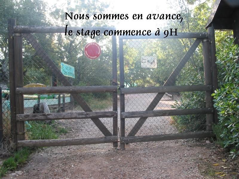 Pour les amoureux des tortues Hermann : stage au village des tortues de Gonfaron (Sud de la France) Fer_st14