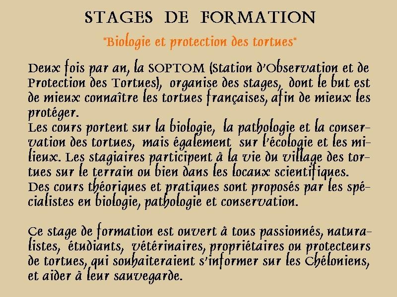 Pour les amoureux des tortues Hermann : stage au village des tortues de Gonfaron (Sud de la France) Fer_st15