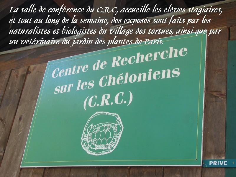 Pour les amoureux des tortues Hermann : stage au village des tortues de Gonfaron (Sud de la France) Fer_st17