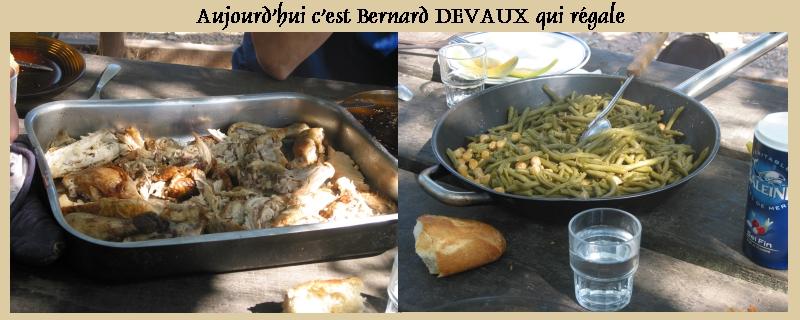 Pour les amoureux des tortues Hermann : stage au village des tortues de Gonfaron (Sud de la France) Fer_st25