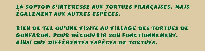 Pour les amoureux des tortues Hermann : stage au village des tortues de Gonfaron (Sud de la France) Fer_st26